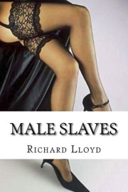 Male Slaves by Mr Richard J Lloyd