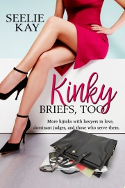 Kinky Briefs, Too by Seelie Kay