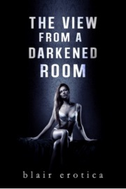 The View From A Darkened Room by Blair Erotica