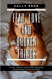 Fear, Love and Broken Things by Sally Bend