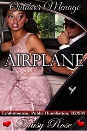 Airplane: Exhibitionism, Public Humiliation, BDSM: Book 1 by Daisy Rose