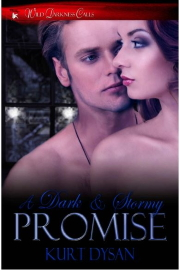 A Dark And Stormy Promise (Wild Darkness Calls) by Kurt Dysan