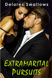 Extramarital Pursuits: The Complete Trilogy by Delores Swallows